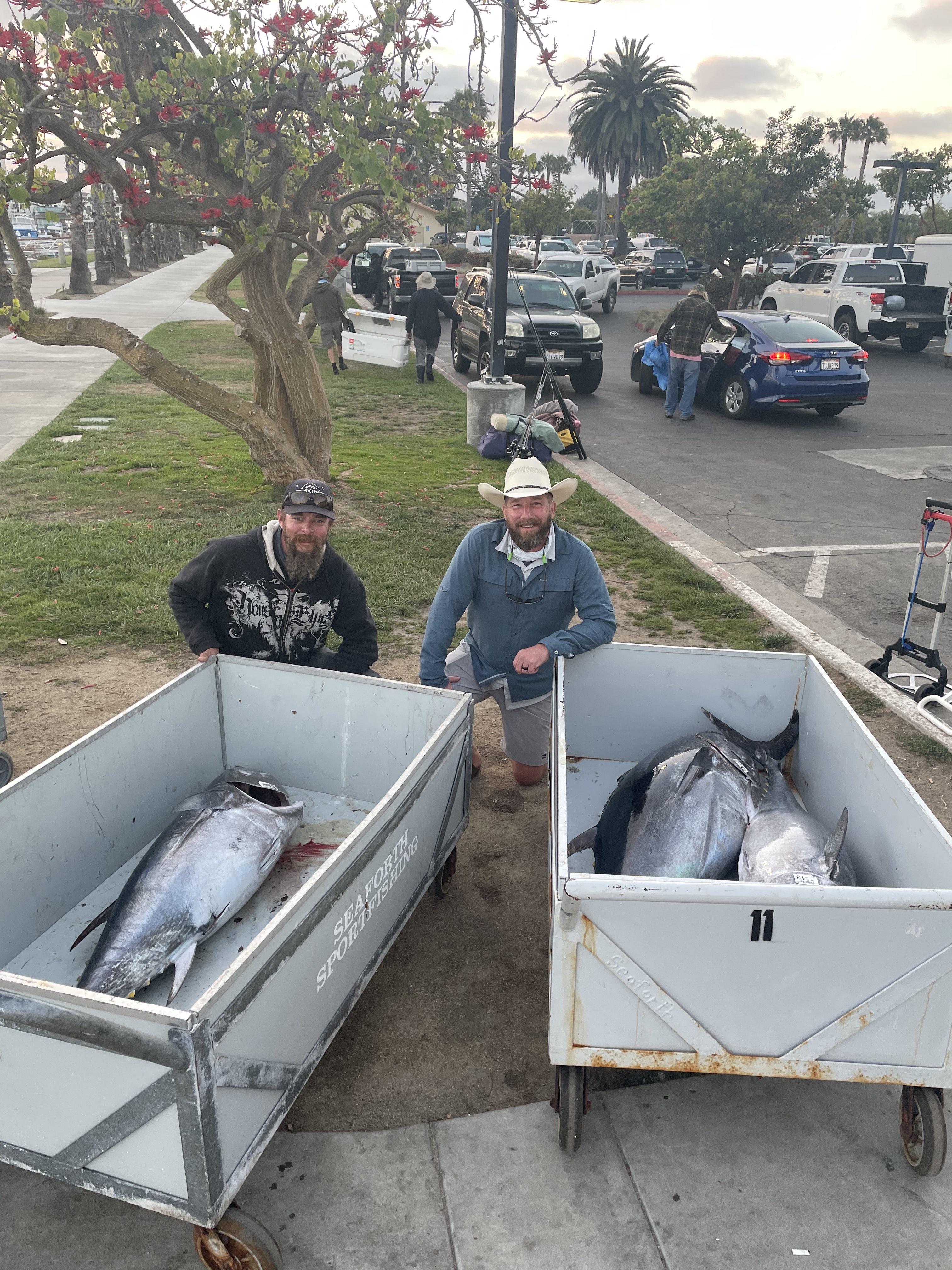 3 Bluefin Gus and Hank.jpg