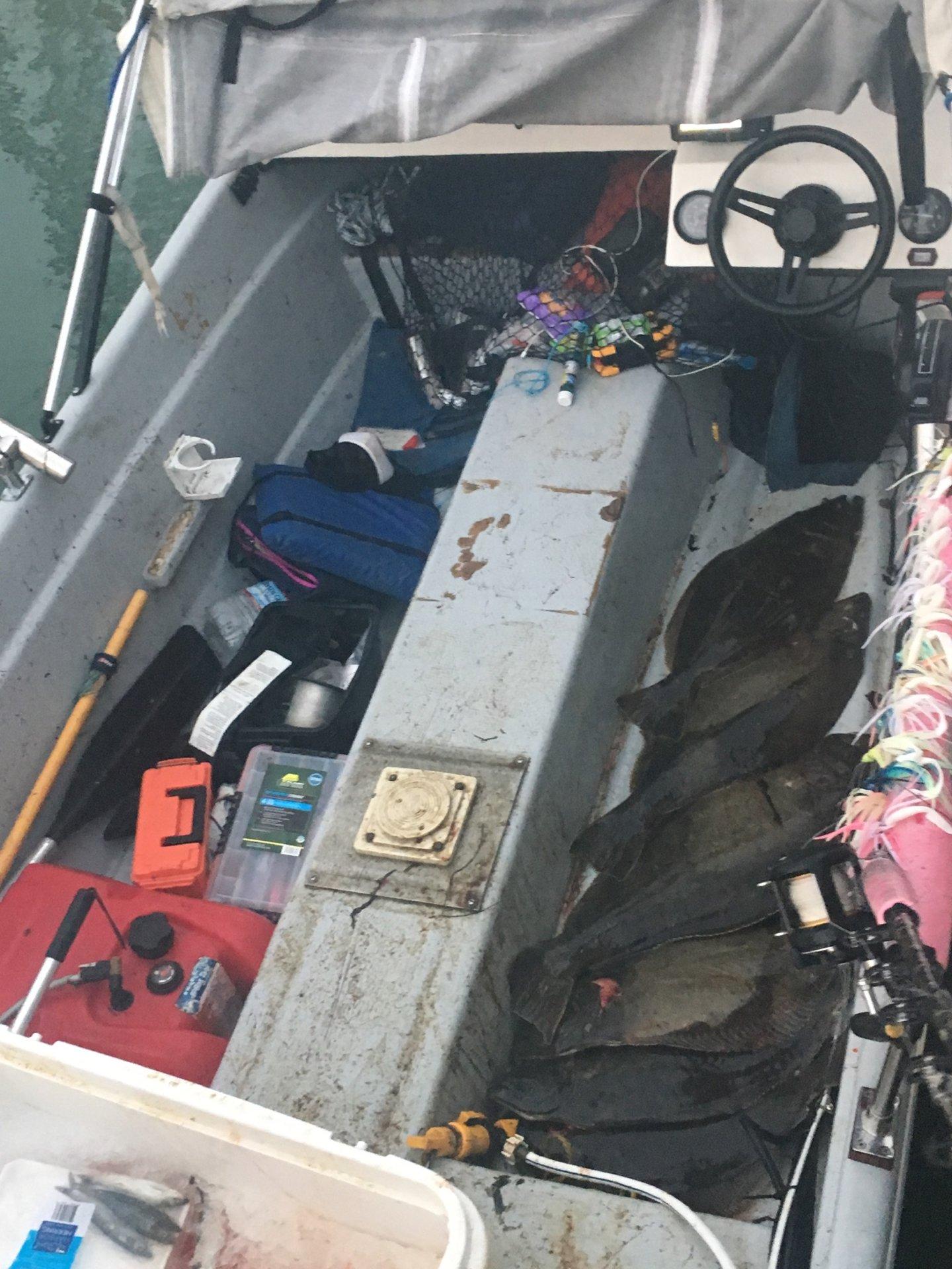 For Sale - 14' Livingston   Bloodydecks West Marine Fuse Box on