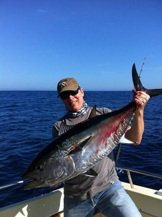 Bluefin 700p.jpg