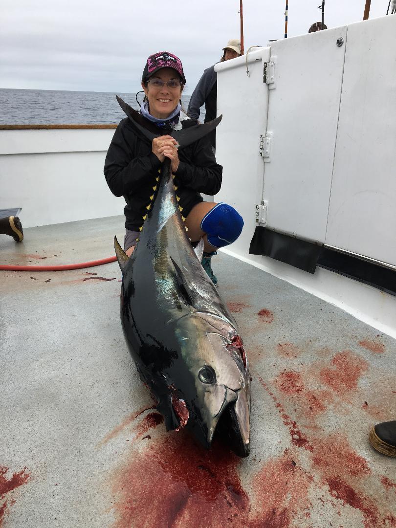 bluefin.jpeg