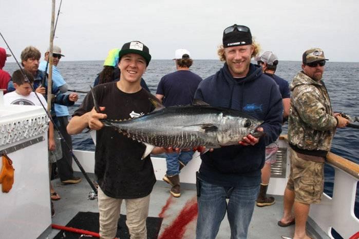 Bluefin-Tuna-3.jpg
