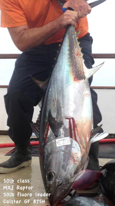 Bluefin50lbs.jpg