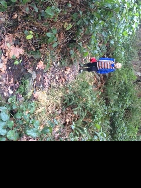 Cypress hunt.jpg