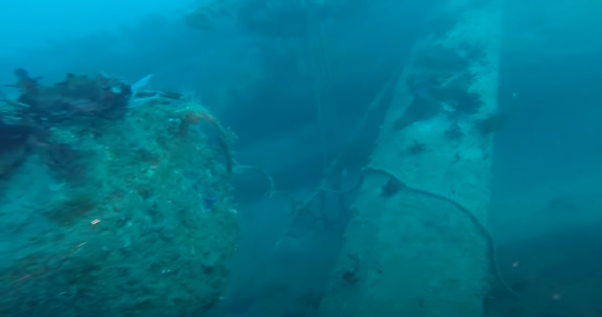 Dive shot.jpg
