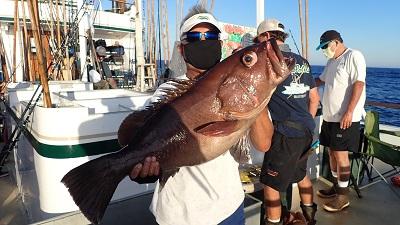 FISH LOUIS GROUPER IMG_0173.JPG