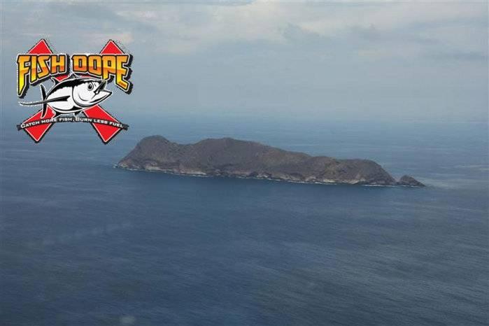 Fishdope-coronado-islands.jpg