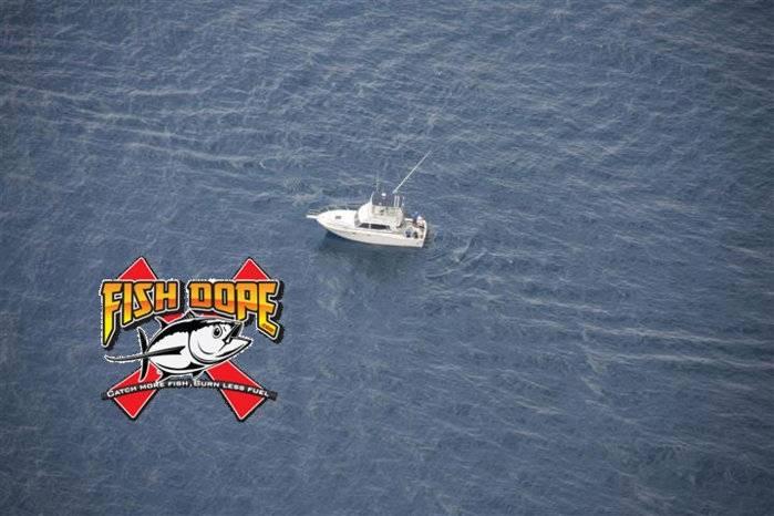 Fishdope Spotter Plane 1.jpg