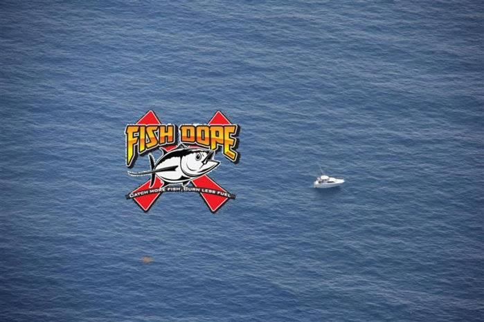 Fishdope-Spotter-Plane-10.jpg