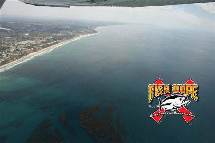 Fishdope-Spotter-Plane-1011.jpg