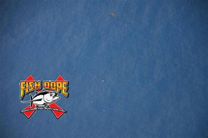 Fishdope-Spotter-Plane-1017.jpg