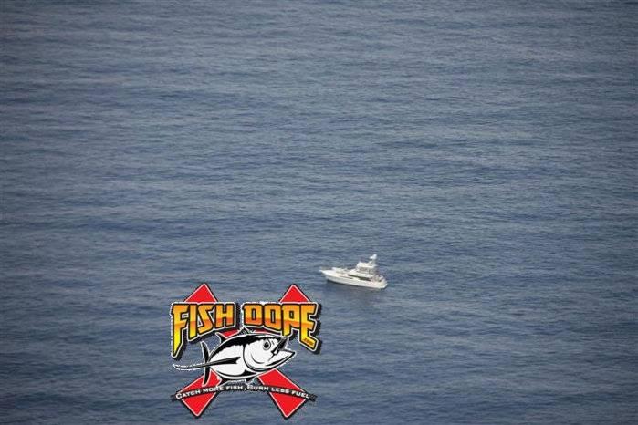 Fishdope-Spotter-Plane-1018.jpg