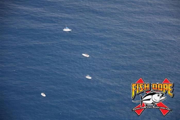 Fishdope-Spotter-Plane-1019.jpg