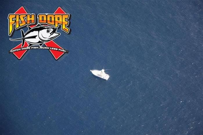 Fishdope Spotter Plane 11.jpg