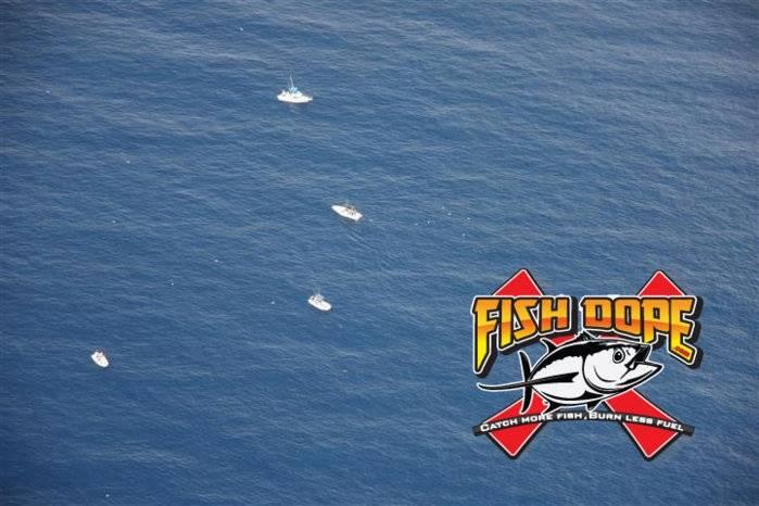 Fishdope Spotter Plane 12.jpg