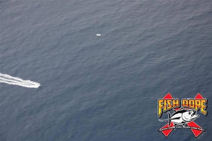 Fishdope Spotter Plane 3.jpg