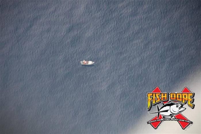 Fishdope Spotter Plane 5.jpg