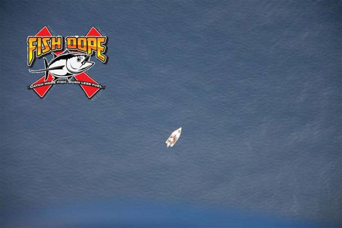 Fishdope Spotter Plane 6.jpg
