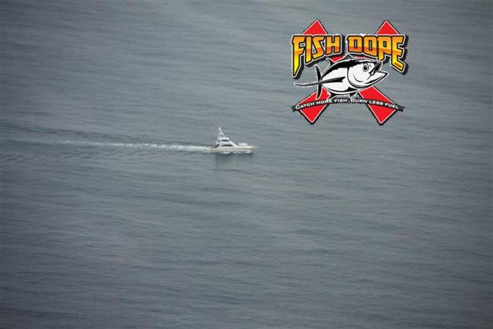 Fishdope Spotter Plane 7.jpg