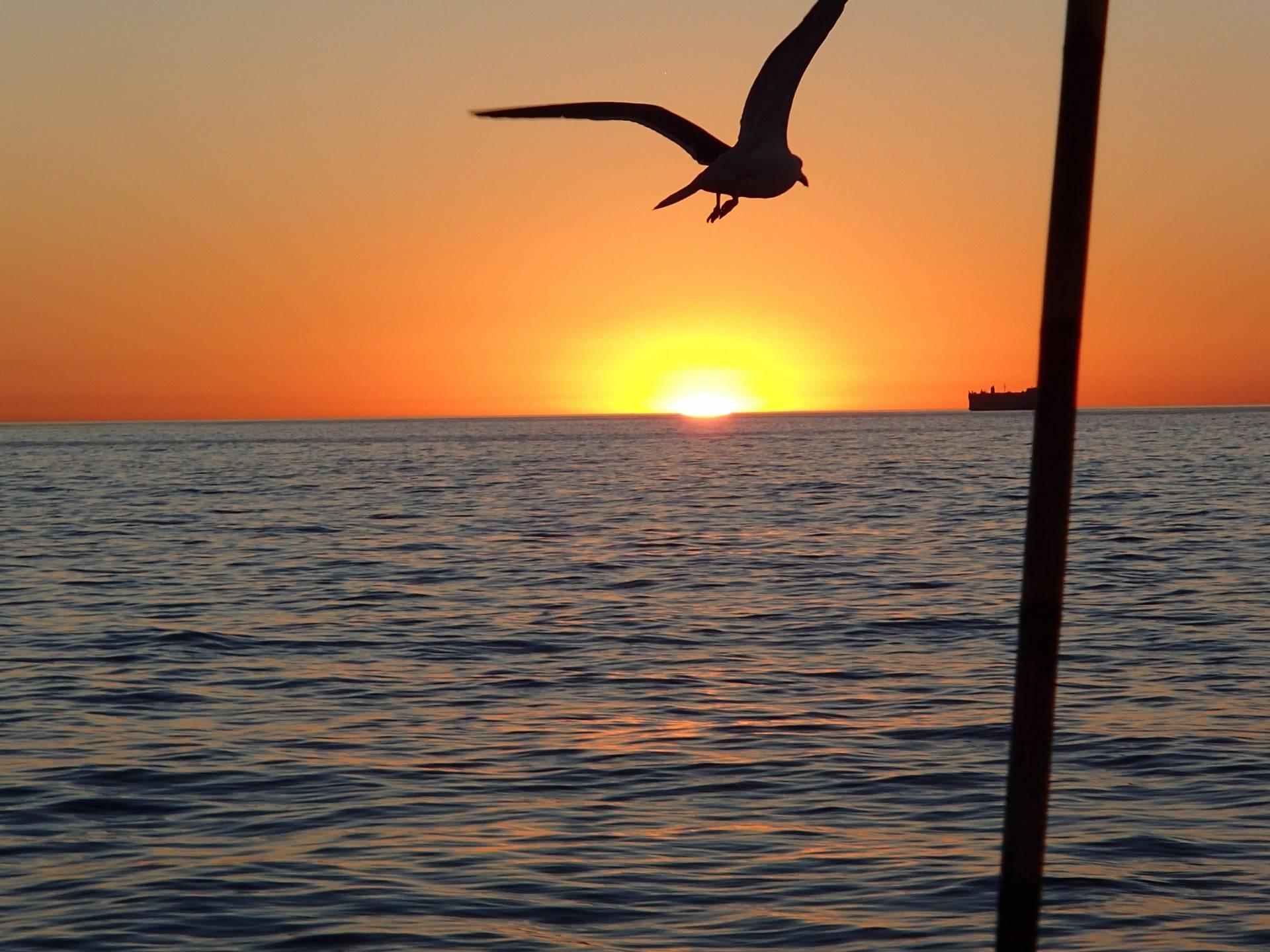 fishing 081.jpg