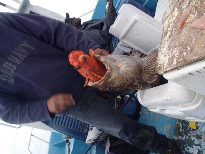 fishing 084.jpg