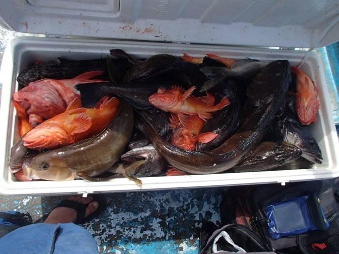 fishing 097.jpg