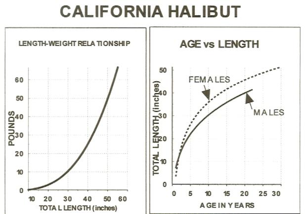 hali-length vs weight0001.jpg