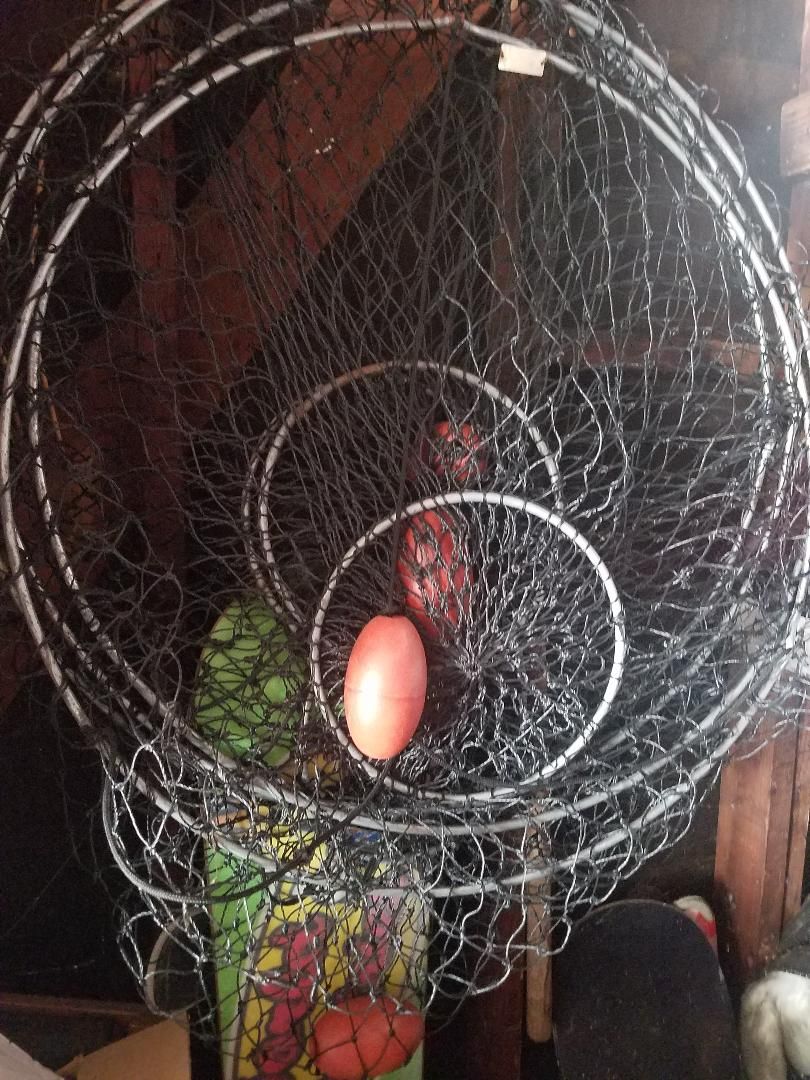 For Sale - 4 Hoop nets Promar lay flat $30 (no rope ...