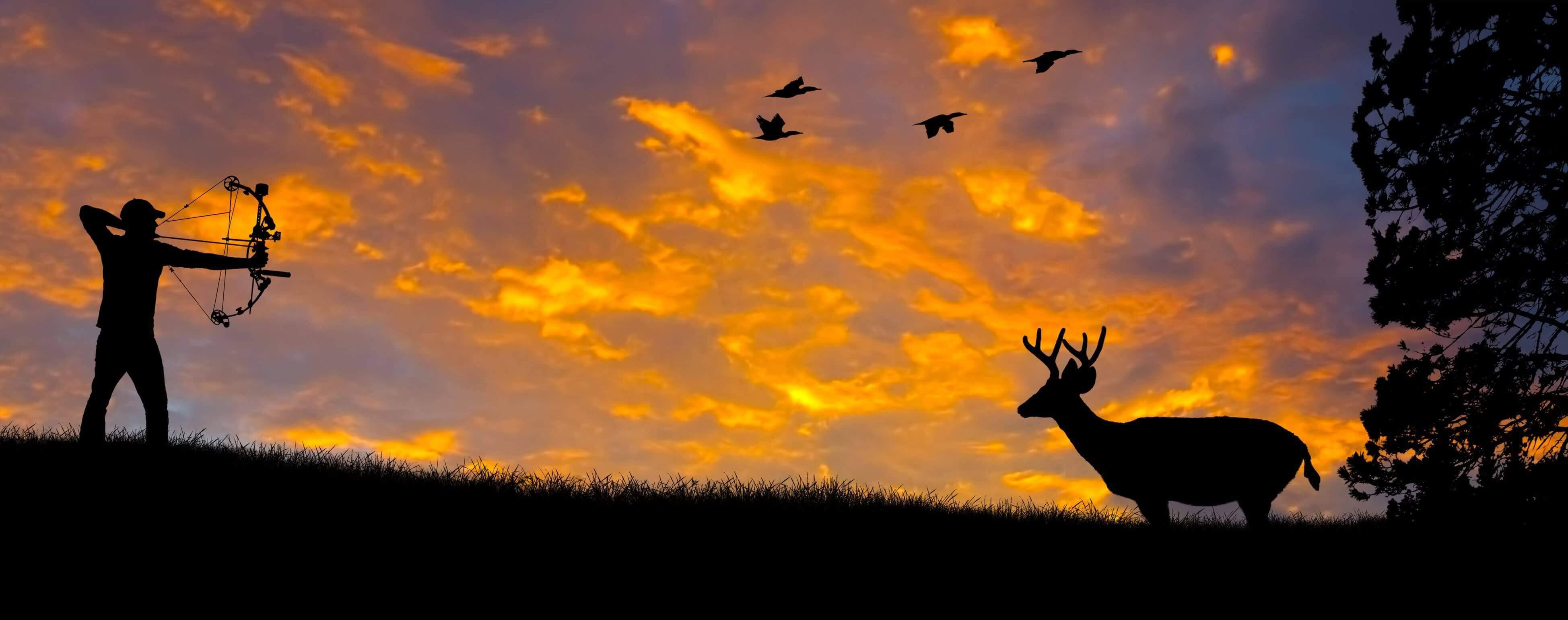 Hunting-seeker.jpg