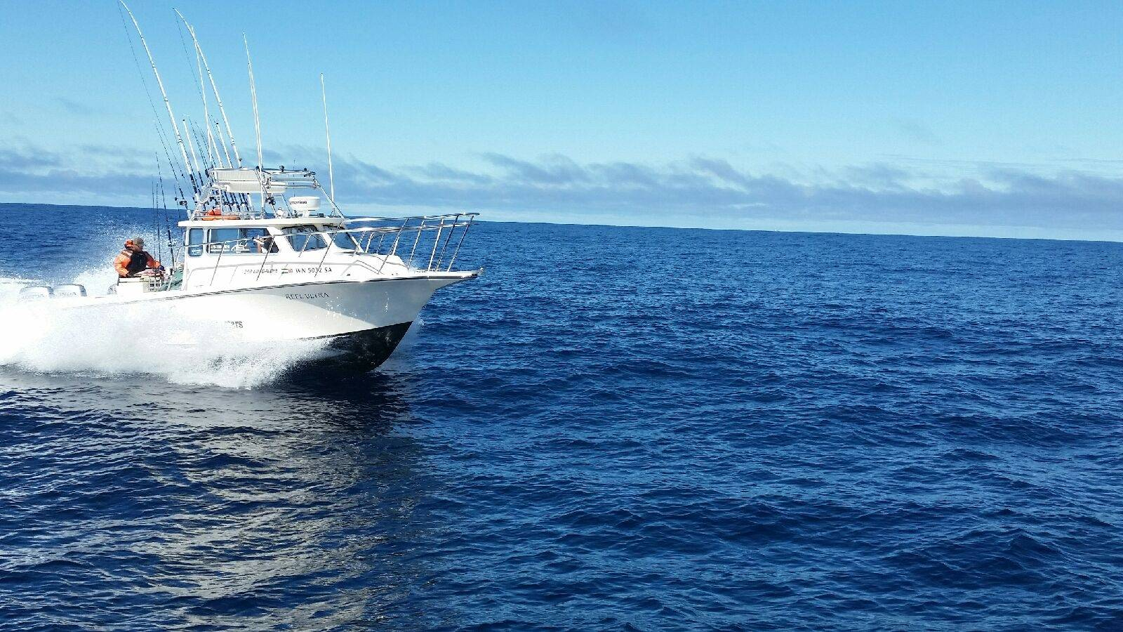 Westport washington tuna report 2014 autos post for Westport fishing charters
