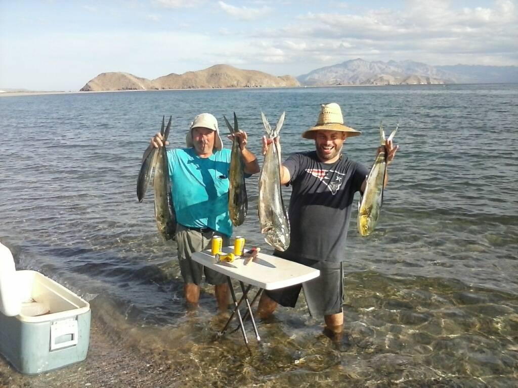 Bahia de los angeles saltwater fishing forums for Fishing in los angeles