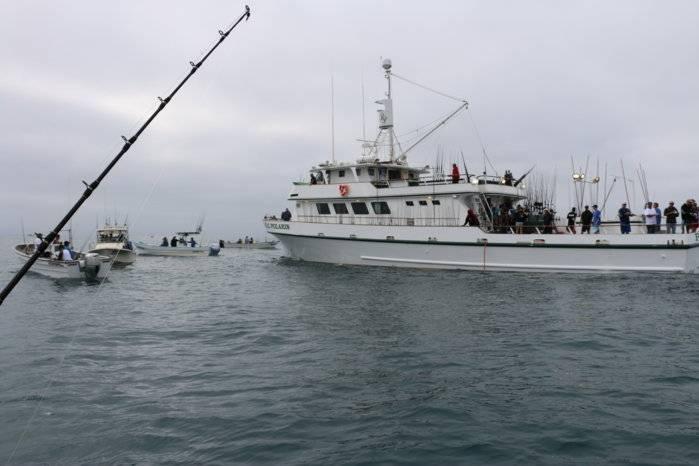Royal polaris san quintin page 2 saltwater fishing forums for Royal polaris fishing
