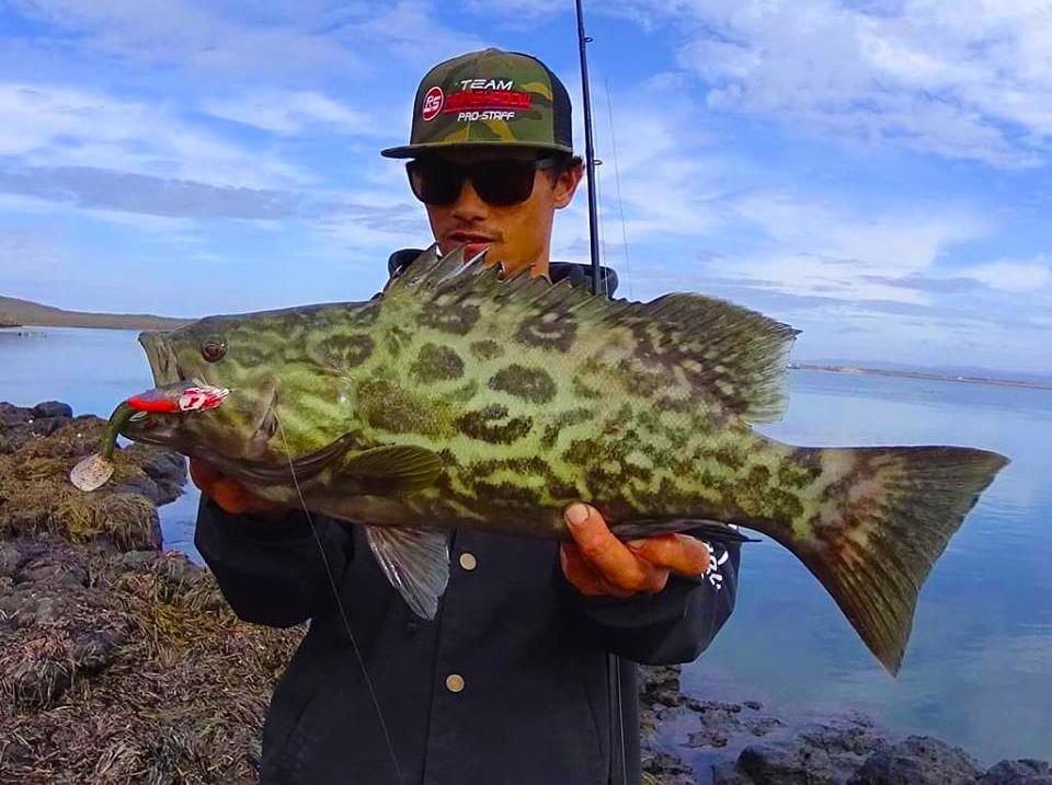 K&M Sprotfishing -  Chris Catian's onshore grouper.jpg