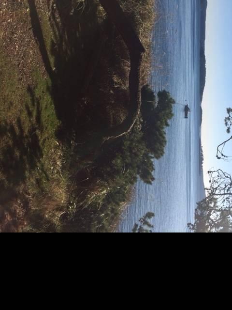 looking west from jones.jpg