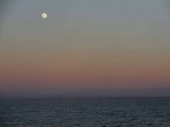 moon rise_.JPG