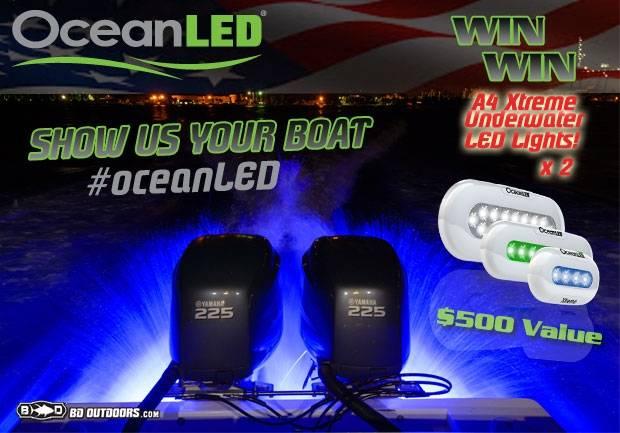 OceanLED-CONTEST-w-Flag.jpg
