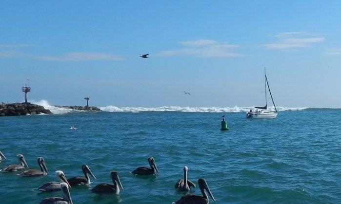 oceanside harbot.jpg