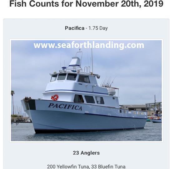 Pacifica Counts.jpg