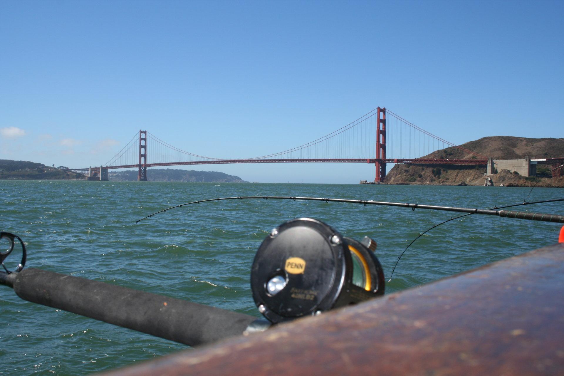 Penn Golden Gate 3.JPG