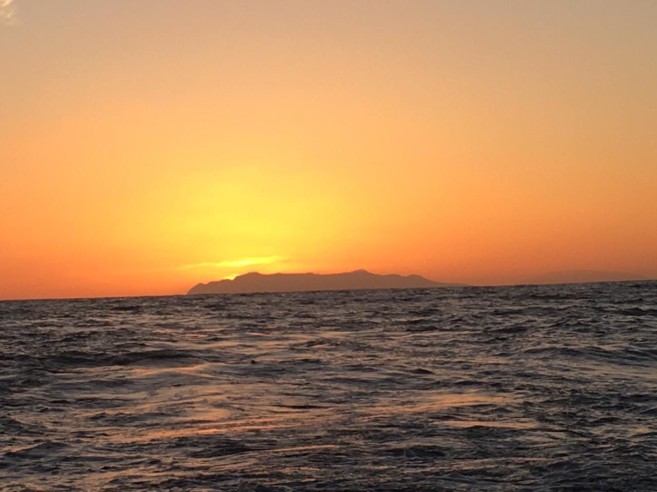 puerto vallarta fishing report May 2020 Tuna, marln, sailfish  (3).JPG