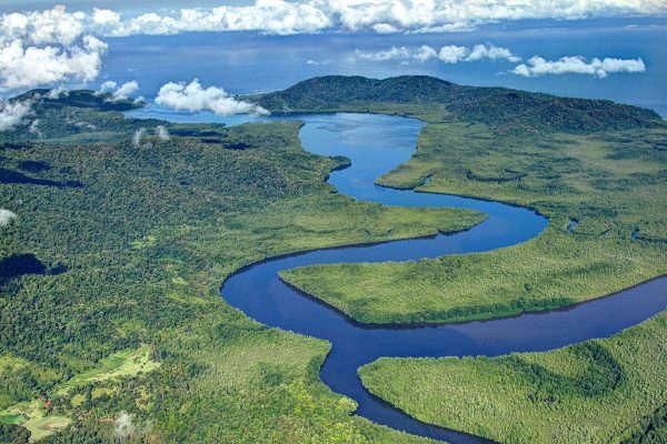 Terraba-Sierpe-National-Wetlands-Tour-by-Boat.jpg