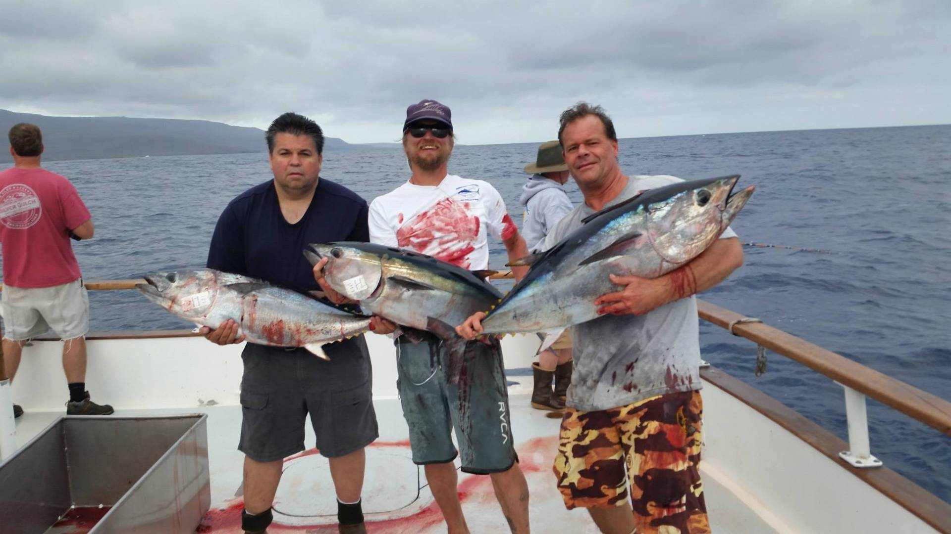 Three amigos Supreme Bluefin.jpg