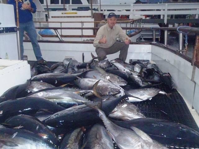 Tom Islander Fish web.jpg