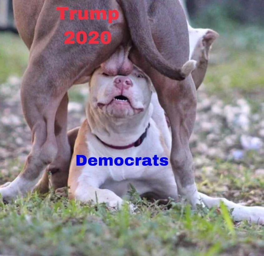 trump 2020 balls.jpg