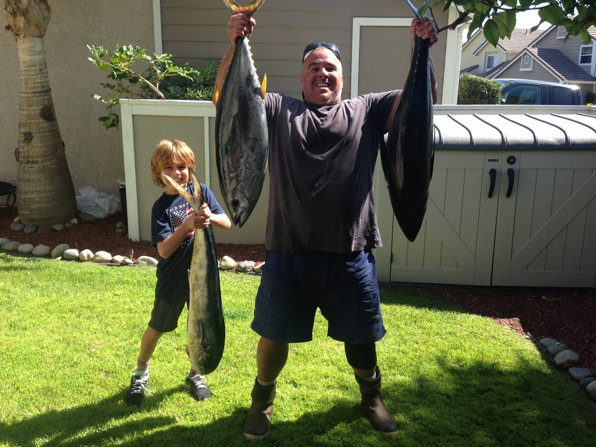 Good fishing yft 12 miles from dana point same day report for Dana point fish report