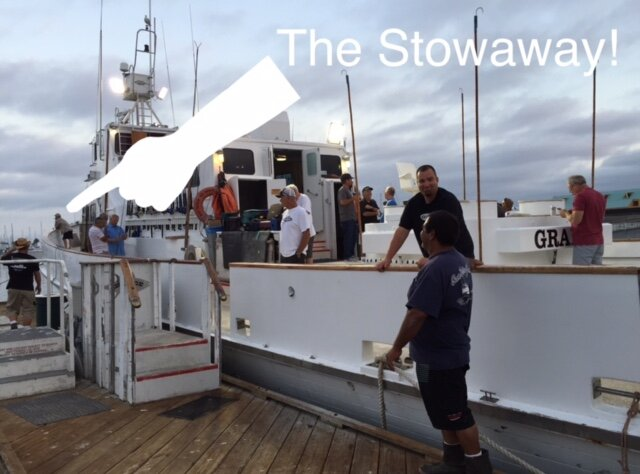Stowaway.JPG