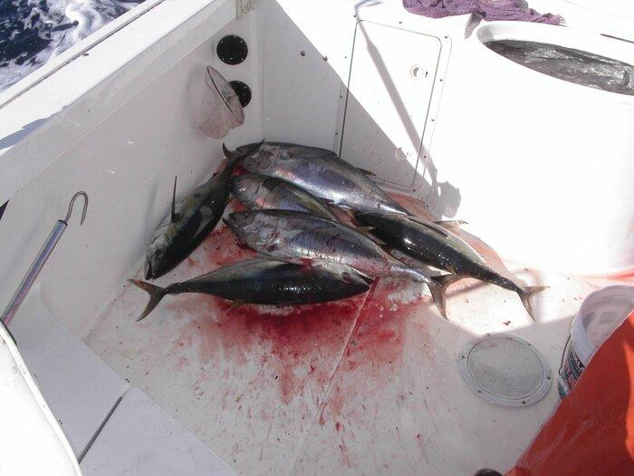 10-19-07 Fishing 008.jpg