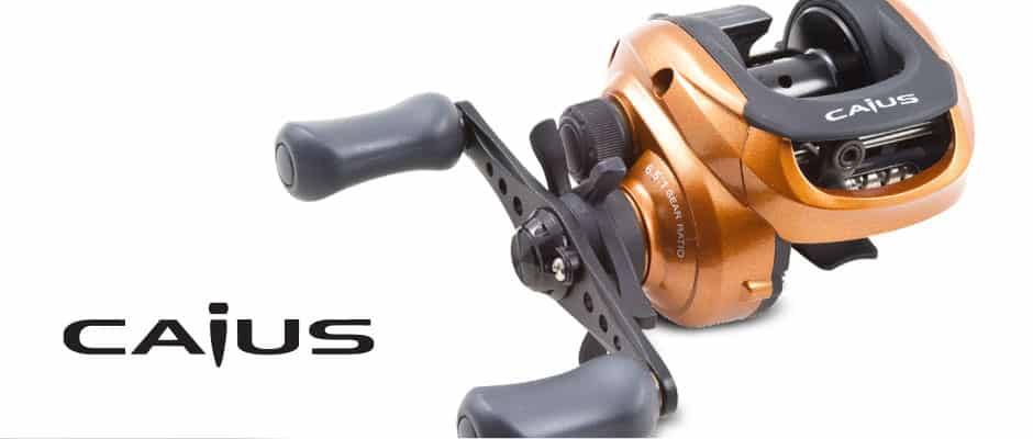 bait casting   Shimano Caius 200