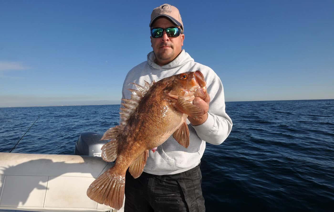 rockfish season