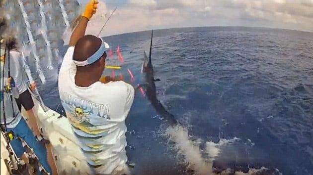 costa rica - Offshore World Championship