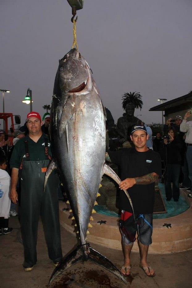 record tuna